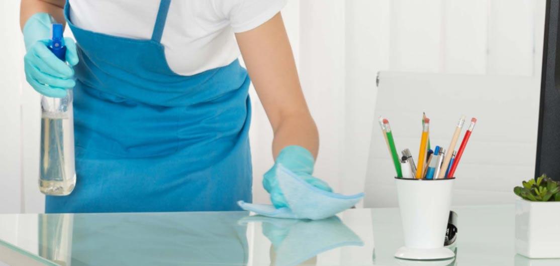 EG Environmental Cleaner